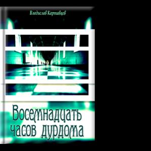Автор: Картавцев Владислав Роман не оставит равнодушным никого.
