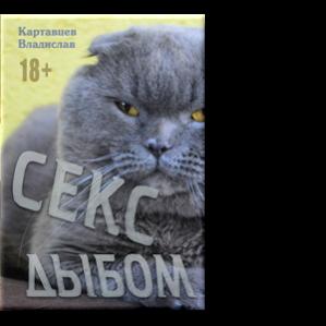 Автор: Владислав Картавцев  Роман. Осторожно, эротика!