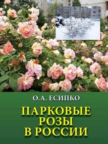Парковые розы в России