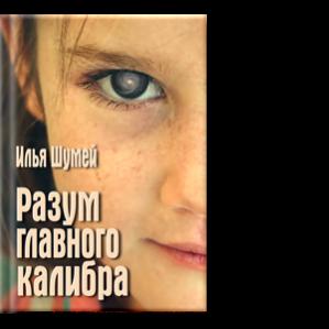 Автор: Илья Шумей новый роман из вселенной «Участи всех героев» и «Игр в чужой песочнице»
