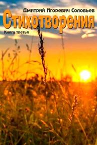 Автор: Дмитрий Игоревич Соловьев. Книга третья
